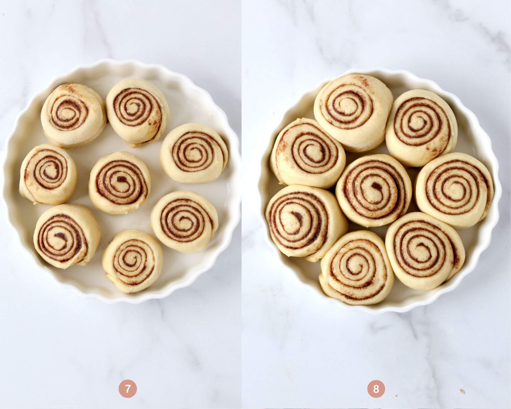 cinnamon rolls proofing in a baking dish