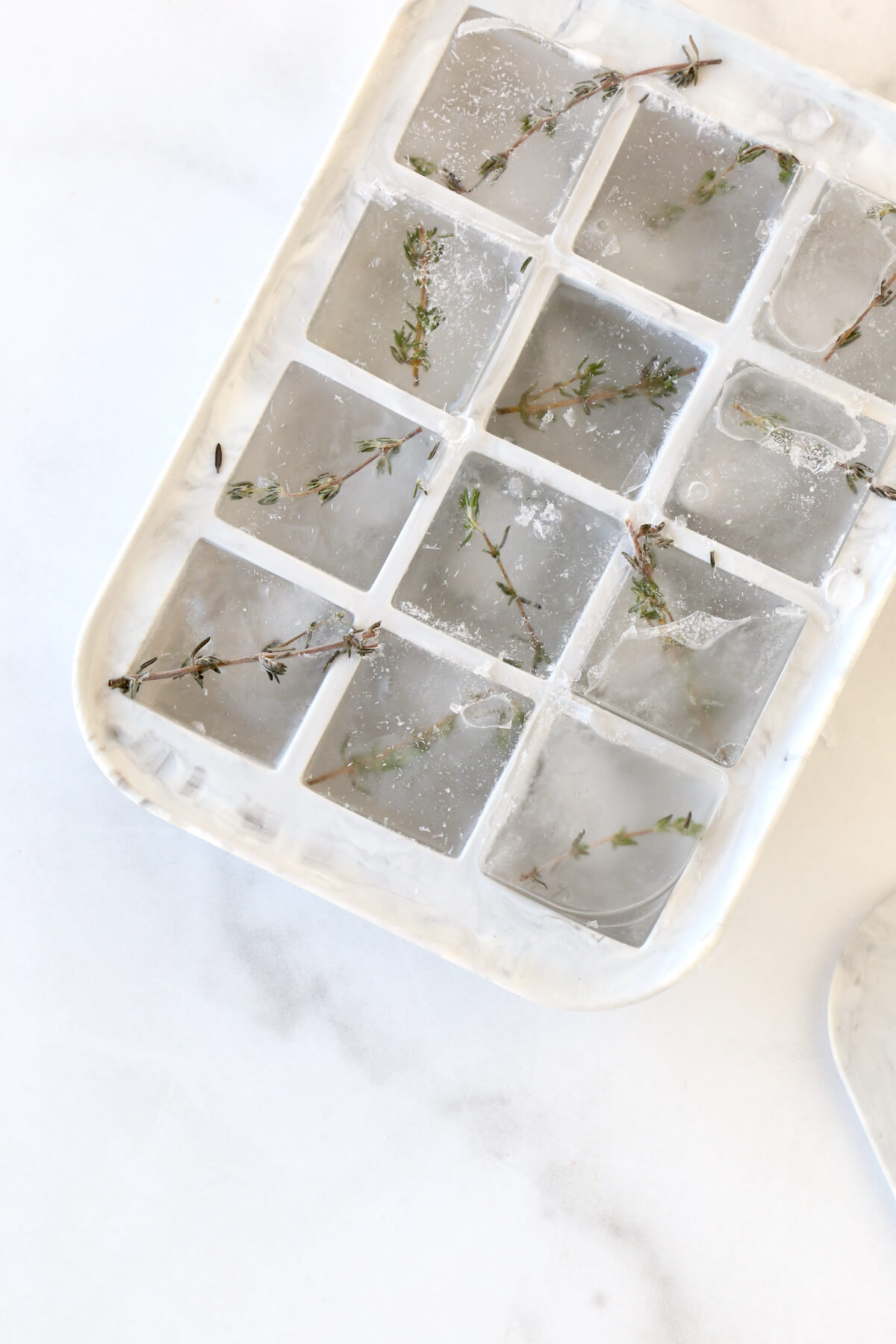 A gray ice cube tray filled with water and fresh thyme leaves.